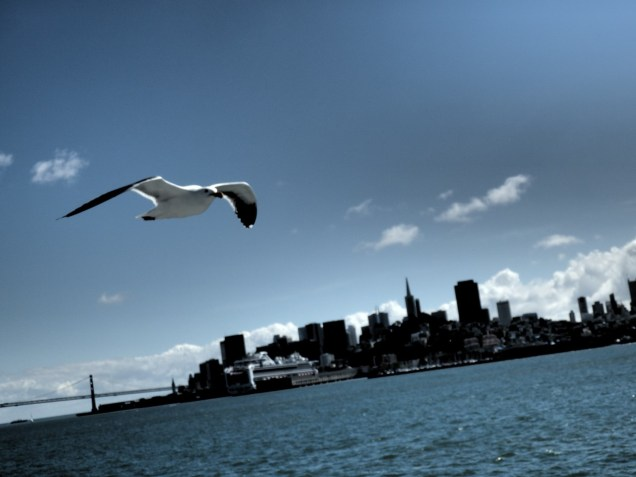 Lucky shot from boat to Alcatraz